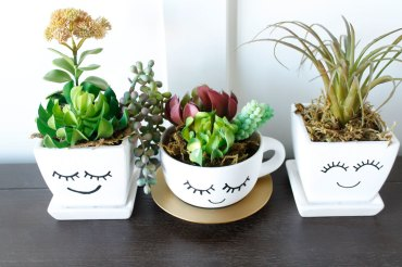 succulant-smile-planters8