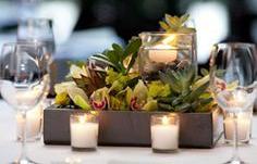 5fc233bf055a6dc398e80afc9a087ee0--succulent-centerpieces-table-centerpieces