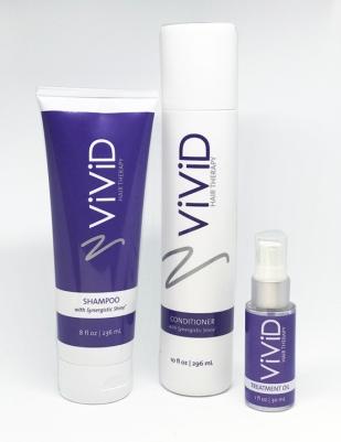 ViViDSystem_small